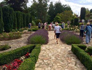 St Luke's Open Gardens