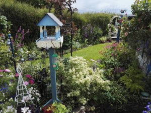 Harrowbarrow Open Gardens