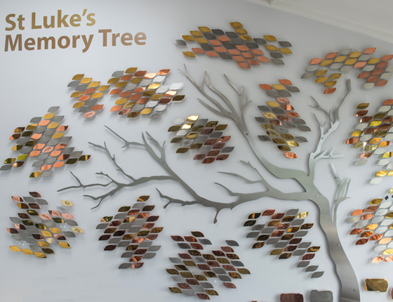 Memory Tree Remembrance St Luke S Hospice Plymouth