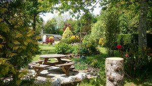 Lower Charaton Cross Open Gardens